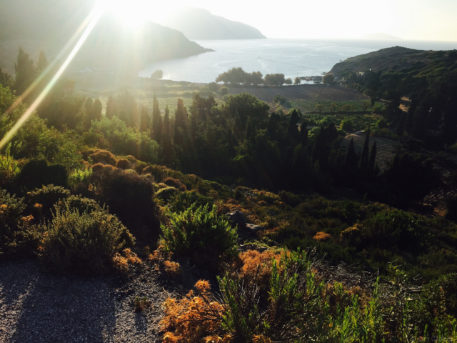 Abendstimmung in der Buch Kaligiron, Patmos, Griechenland. Foto: Jan Graber, 2015.