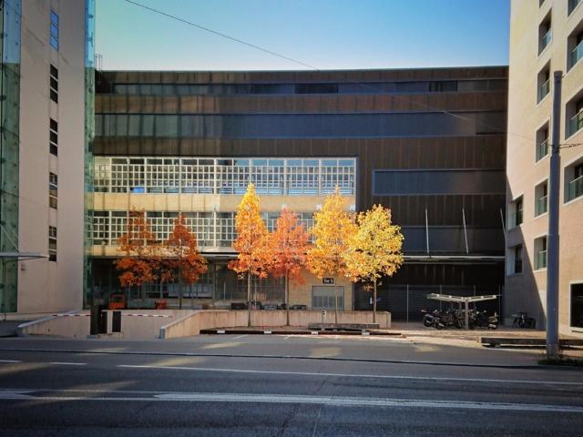 Herbst im Industriequartier, Zürich. Foto: Jan Graber, 2018.